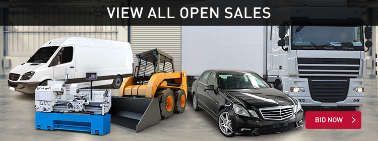 View All Open Sales
