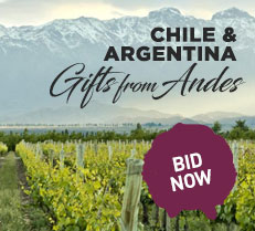 Chile and Argentina - Gifts from Andes