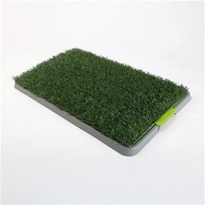 Pet Potty Training Pad Tray - 1 Grass Ma