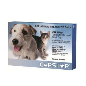 Cheap Dog Worming Tablets Australia
