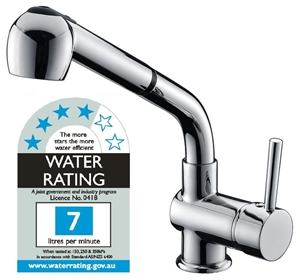 Kitchen Basin Mixer Tap Faucet w/Extenda