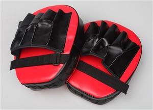 2 x Thai Boxing Punch Focus Gloves Kit P