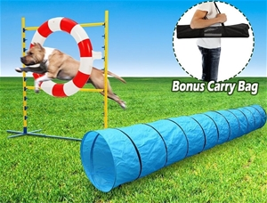 Pet Dog Agility Jump Training Set