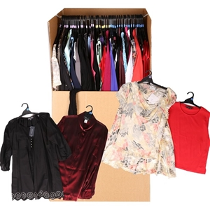Designer Clothes Auction | 50 X Assorted Ladies Designer Clothing Skirts Tops Pants