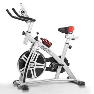 Powertrain Flywheel Exercise Spin Bike -