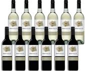 Wayville Estate Pinot Grigio & Shiraz (12 x 750mL) Mixed Pack