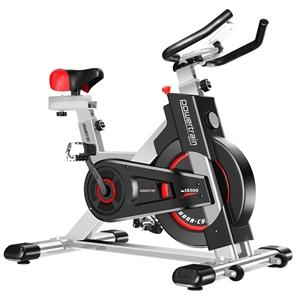 Powertrain Heavy Duty Exercise Spin Bike
