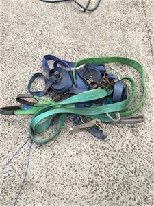 Assortment of Tie Downs