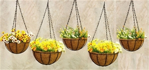 Hanging Planters - Coconut Husk Material