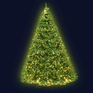 Jingle Jollys 2.4M 8FT Christmas Tree LE