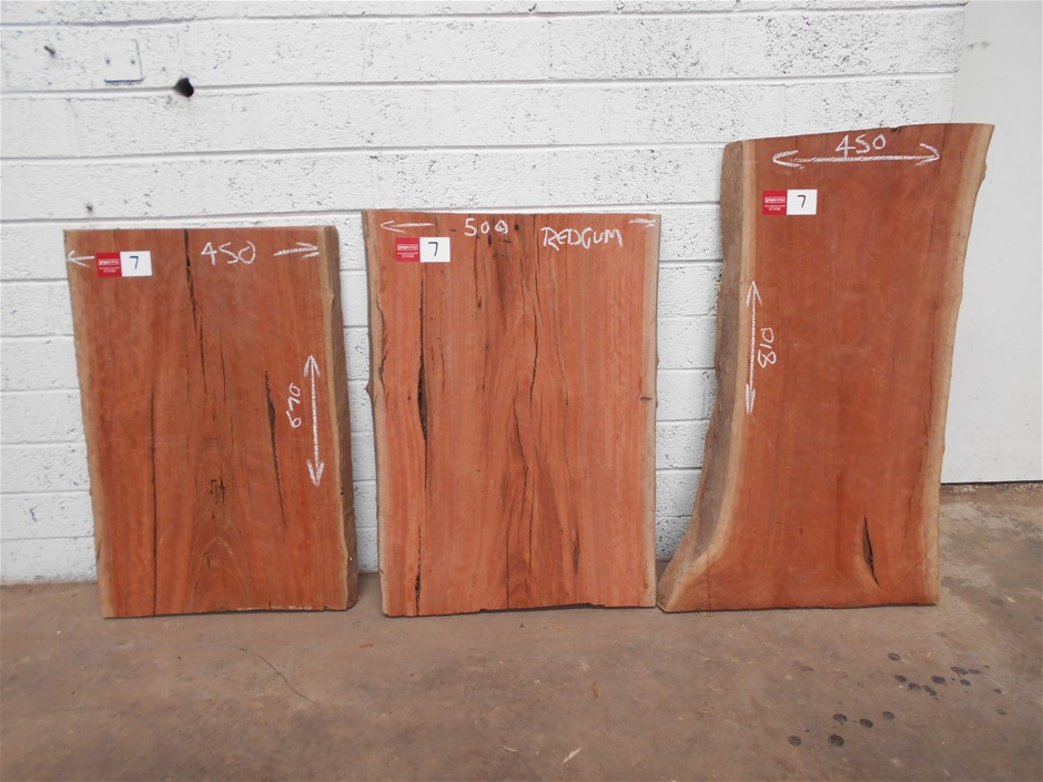 Triple Pack - River Red Gum