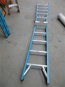Rhino Industrial Ladder