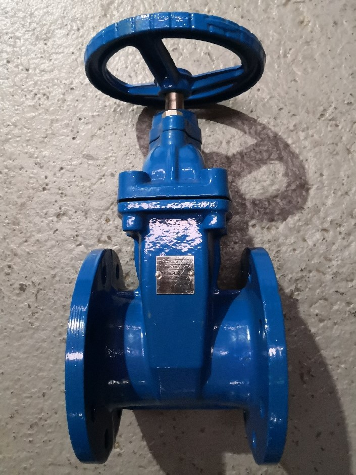 Gate Valves with Wheel Handle - Flanged (100mm)