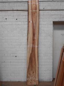 Timber Slab - Camphor Laurel