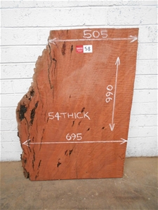 Small Timber Slab - River Red Gum
