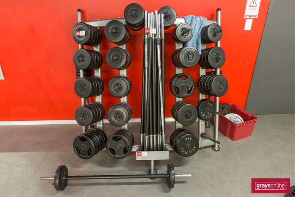Avanti & assorted weights Barbell Set with weights & Rack
