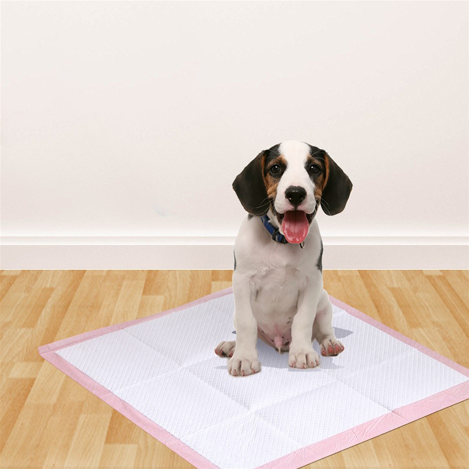PaWz 400 Pcs 60x60 cm Pet Puppy Toilet Training Pads Absorbent