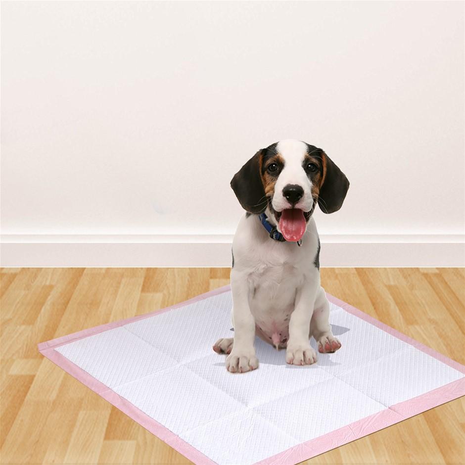 PaWz 400 Pcs 60x60 cm Pet Puppy Toilet Training Pads Absorbent