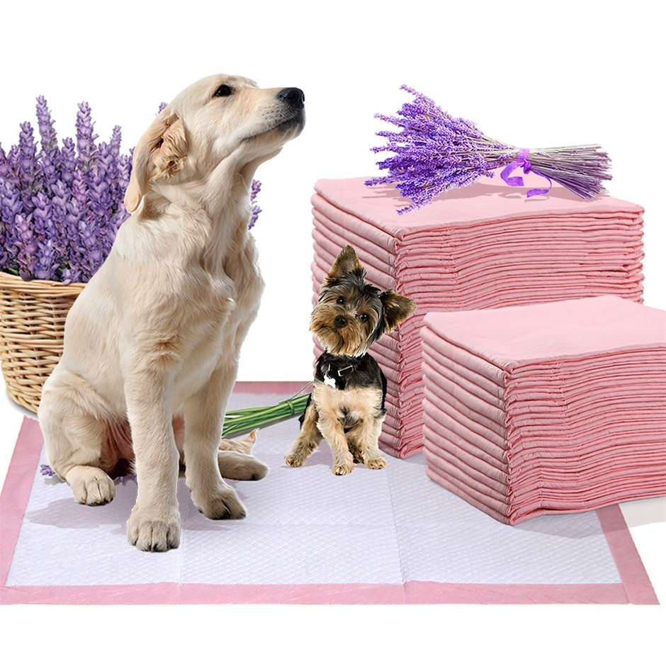 PaWz 200 Pcs 60x60 cm Pet Puppy Toilet Training Pads Absorbent Lavender
