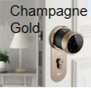 Smart Door Lock Champagne Gold