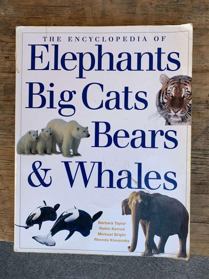 Book, Non-Fiction, Encyclopedia, Elephants Big Cats Bear & Whales