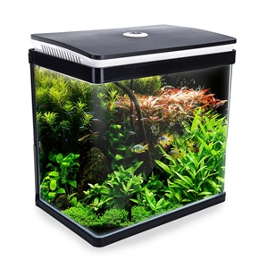 30L Curved Glass RGB LED Aquarium Fish T