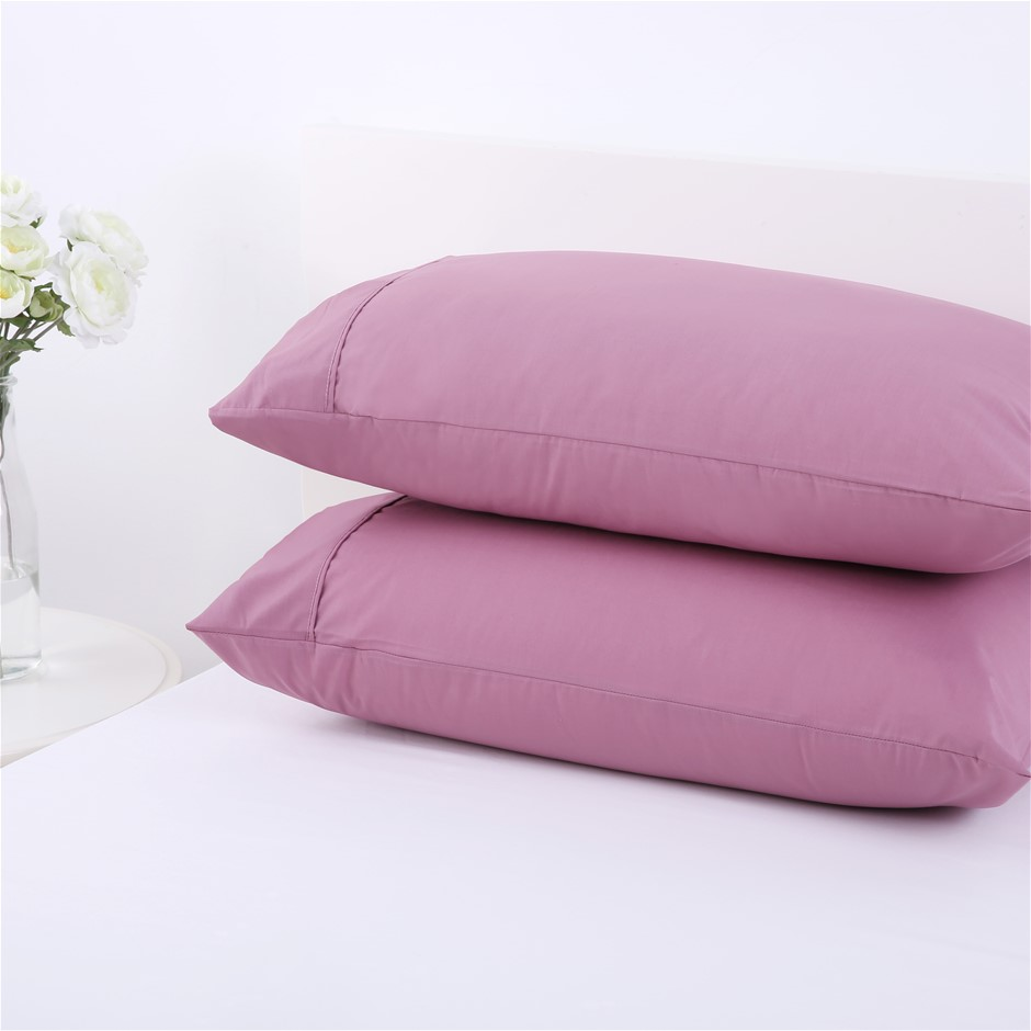 Dreamaker 250TC Plain Dyed Standard Pillowcases - Twin Pack -purple