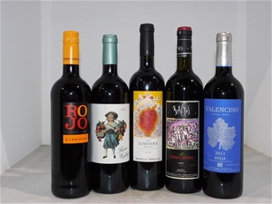 Pack of Assorted Spanish Wine (5x 750mL)