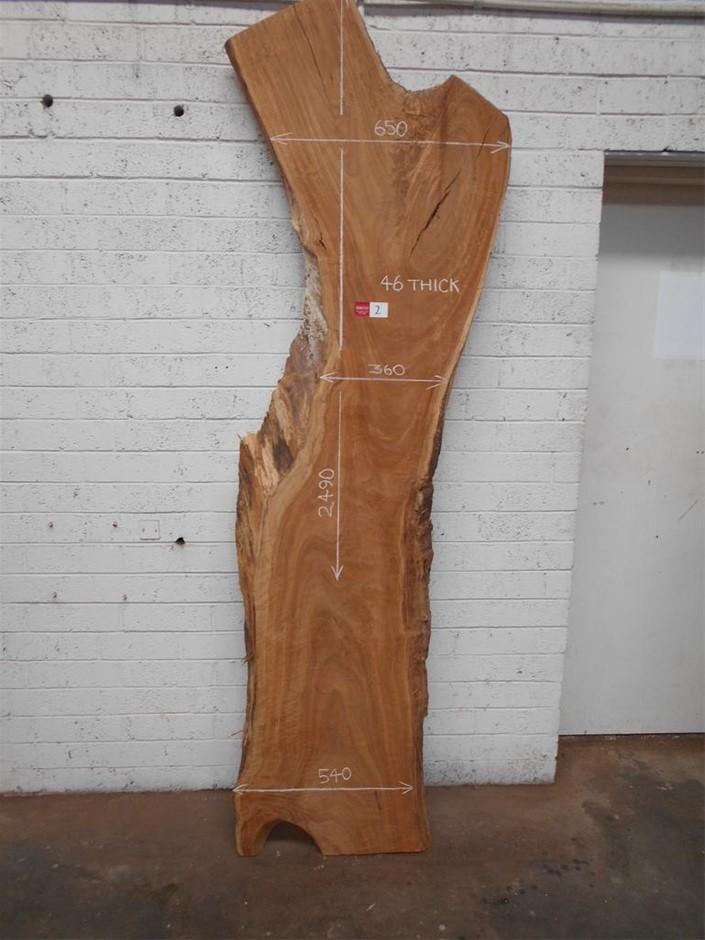 Timber Slab - Peppermint Gum