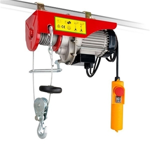 125 /250 Kg 12m Rope Electric Winch / Ho