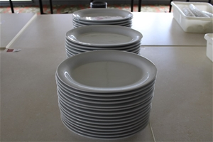 Approx 75 Large Ceramic Oval Plates