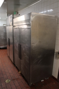 Williams Standing Freezer