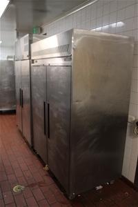 Williams Standing Freezer