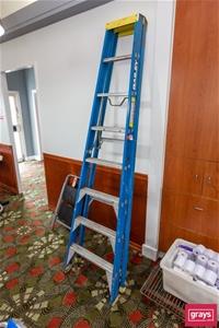 Bailey 7 Step Step Ladder