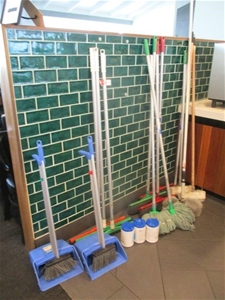 Quantity of Various Cleaning Items