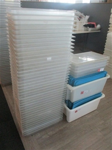 Quantity 40 Approx Clear Plastic Trays