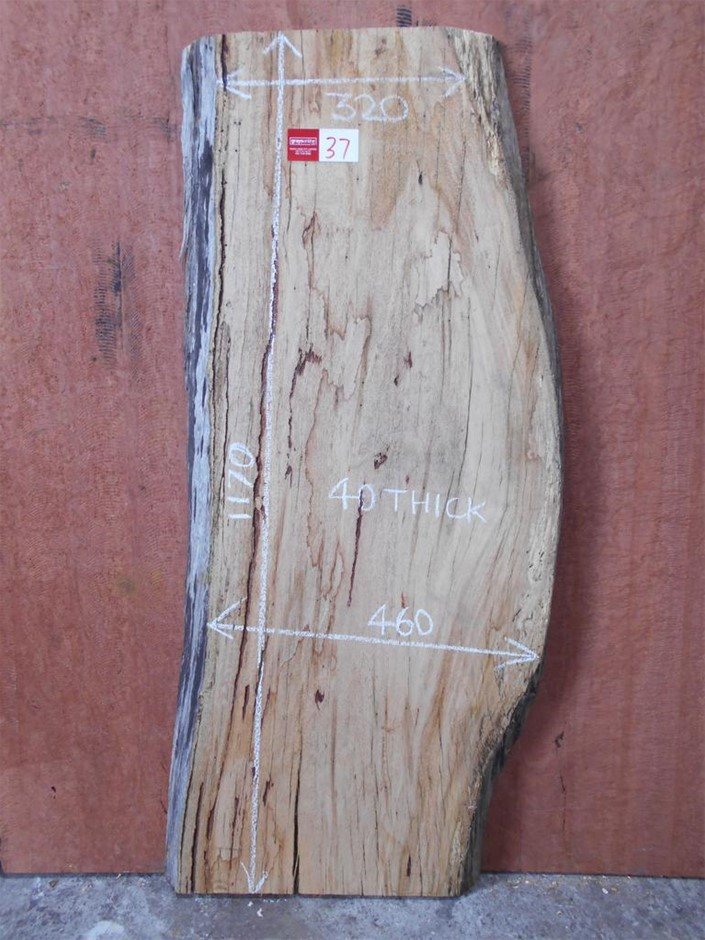 Timber Slab - Stringy Bark
