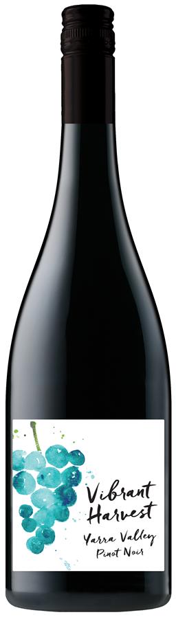 Vibrant Harvest Yarra Valley Pinot Noir 2019 (12x 750mL)