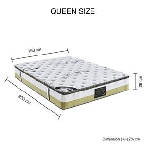 Queen Mattress Memory Pillow Top Pocket